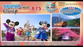 Tokyo with Disneyland
