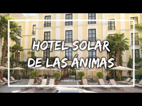 Hotel Solar de las Animas en Tequila
