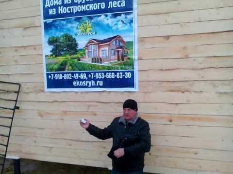 Дом из бруса из Костромы без посредников
