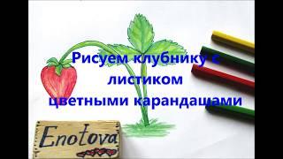Рисуем клубнику с листиком цветными карандашами.  Видео   урок для детей