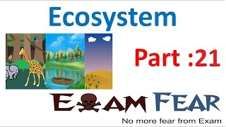 Biology Ecosystem part 21 (Carbon Cycle) class 12 XII