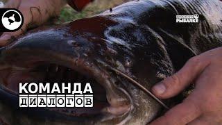 Сом на квок. Рыбалка на Каме | Новые диалоги