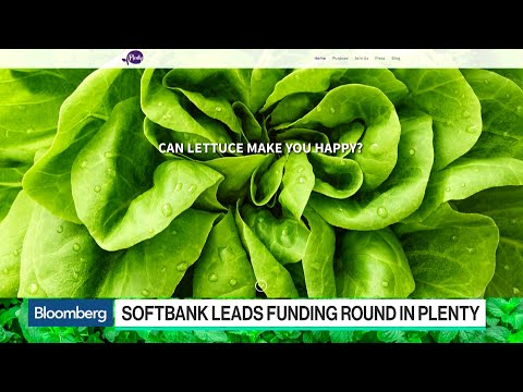 Why SoftBank's Vision Fund Is Betting on Indoor Farms