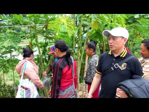 Travel in Laos Pt.1