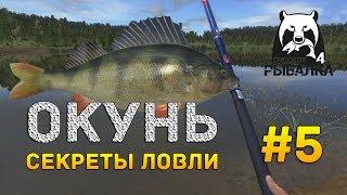 Русская рыбалка 4 #5 - Окунь. Секреты ловли на озере Комариное