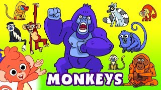 Monkeys for kids | Learn Wild Animals Names and Sounds | Gorilla Chimpanzee cartoon
