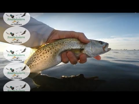 Florida Fishing - St Andrews Bay Speckled Trout Fishing - Oct 29, 2016