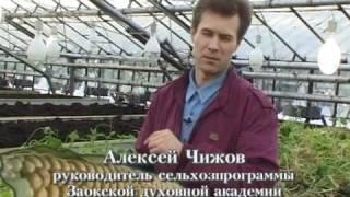 Ogorod.UA - Технология доктора Миттлайдера - часть 18(, 2010-08-19T19:18:33.000Z)