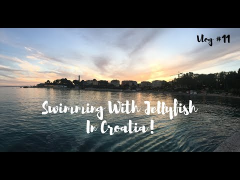 Swimming with Jellyfish in Croatia! (Vlog #11)