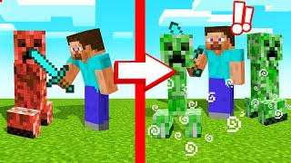 TOUCH MOB = MULTIPLY In MINECRAFT!