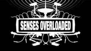 Senses Overloaded intro
