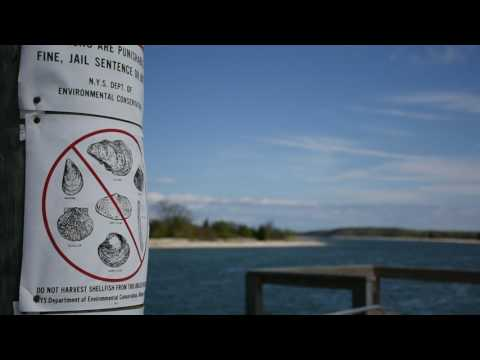 Long Island Sound Study Review