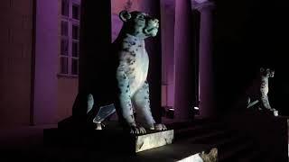 Фестиваль Круг света 2018, Москва, Коломенское, Львы у Дворцового павильона