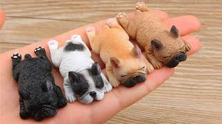 AWW CUTE BABY ANIMALS  Funny and cute moments of animal loving family  OMG Animls Soo Cute #30