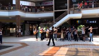 mariachi nuevo santander mall flash mob