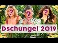 Dschungelcamp 2019: Die Kandidaten stehen fest! 🐍 | STARS