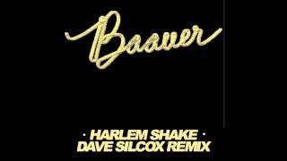 Baauer - Harlem Shake (Dave Silcox Remix) [FREE TRACK]