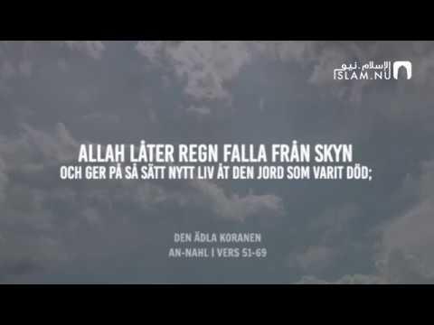 Surah An-Nahl (51-69) - Hazza Al-Balushi