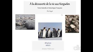 SP2021Print -#2.1-Elie Gaget- À la découverte de la vie aux Kerguelen