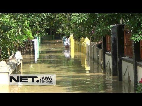 Banjir Genangi 11 Kecamatan di Brebes - NET JATENG