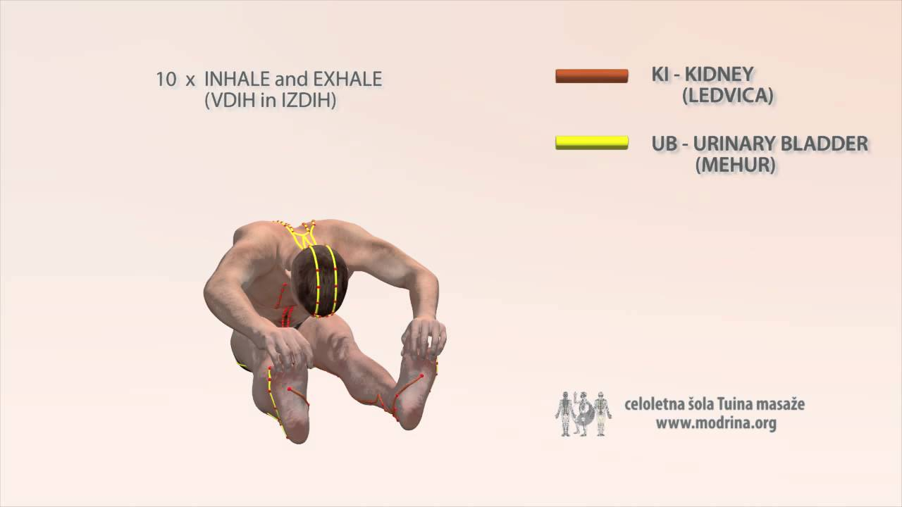 Bladder strengthening exercises