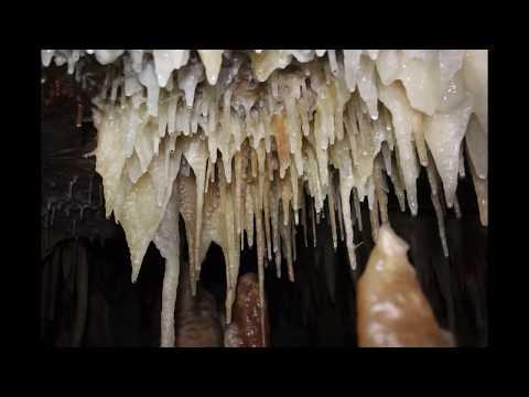 Royal cave @ Buchan Caves Victoria Australia
