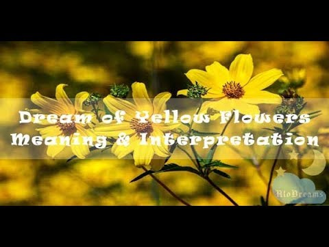 Dreams About Yellow Flowers -  Meaning & Interpretation