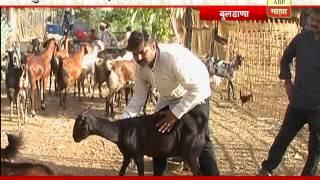 712: Buldhana: Farming Related Business: Success Story Of Vijaysingh Rajput: 30:06:2016