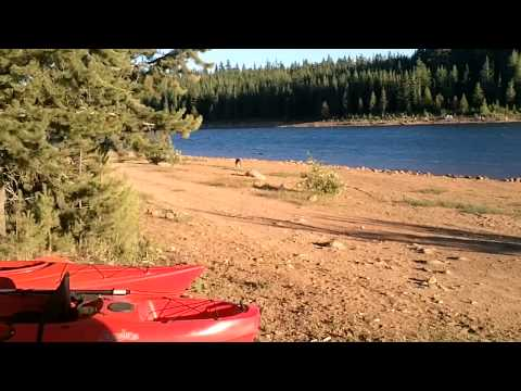 Clear lake loop trail oregon good walks doovi for Clear lake oregon fishing