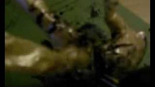Ein Splatterfilm (oder...der verhängnisvolle Akkuschrauber)