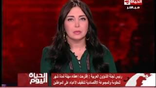 فيديو.. رئيس لجنة الشئون العربية بالبرلمان: مهلة شهر للحكومة