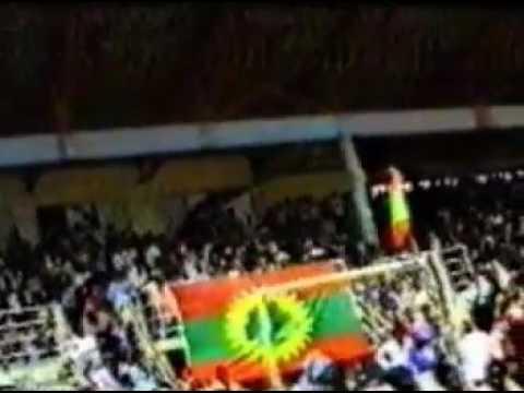Hawiso Gada Caffee ABO(1991) Oromo Music 2017