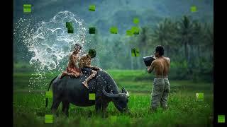 Việt Nam Quê Hương Tôi múa