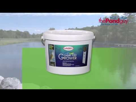 The Pond Guy® Game Fish Grower Fish Food