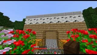 Broses Play Minecraft 6