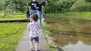 천리포 수목원 . 만리포해수욕장 오다. 올챙이 잡기 신…