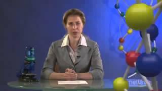 Энергетический обмен в клетке ЕГЭ по Биологии