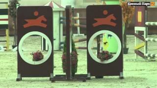 Открытый турнир по конкуру на призы КСК «Виват, Россия!»