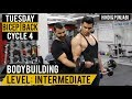 Killer Bicep & Back Split Workout For MASS! Cycle 4 (Hindi / Punjabi)