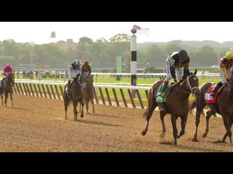 Belmont Stakes Wrap