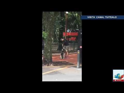 Supuesto 'entrenador de perros' asfixia a un Husky hasta el desmayo en el Parque México
