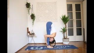 Download lagu AMBROSIAE FITNESS STUDIO | Hamstring flexibility Vinyasa flow