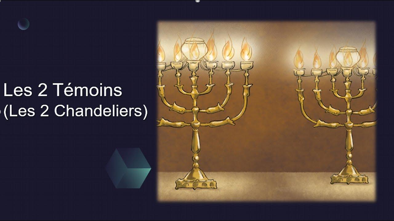 Les 2 Témoins dans la prophetie qui sont-ils ?
