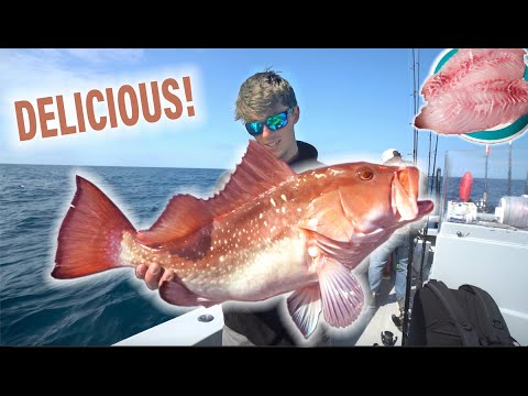 Offshore Big Fish (Catch Clean Cook) Madness! -- Best Fish To Eat! (Florida Send DAY 3)