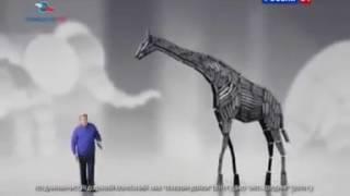 Реклама Триколор ТВ а 11 каналов всегда бесплатно!!!