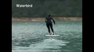 Акваскиппер / Aquaskipper / Waterbird (Водный глайдер, Акваскиппер) в работе