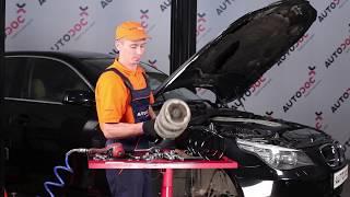Wie BMW 5 E60 Fahrwerksfedern vorne wechseln TUTORIAL | AUTODOC