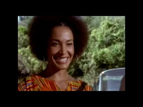 "video-of-alice-walker's-""everyday-use"""