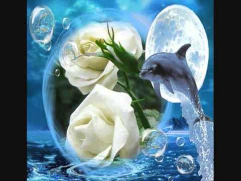 mon Ange de ma vie je t'aime mon bb d'amour - YouTube