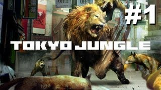 Tokyo Jungle Walkthrough - Part 1 - Welcome to the Jungle (Gameplay/Commentary PS3